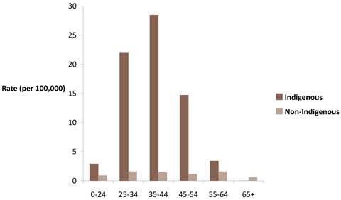 Male death rates from assault, by Indigenous status and age group, Australia, 2001-2005