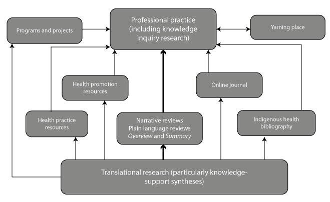 HealthInfoNet's contributions to professional practice in Indigenous health through translational research